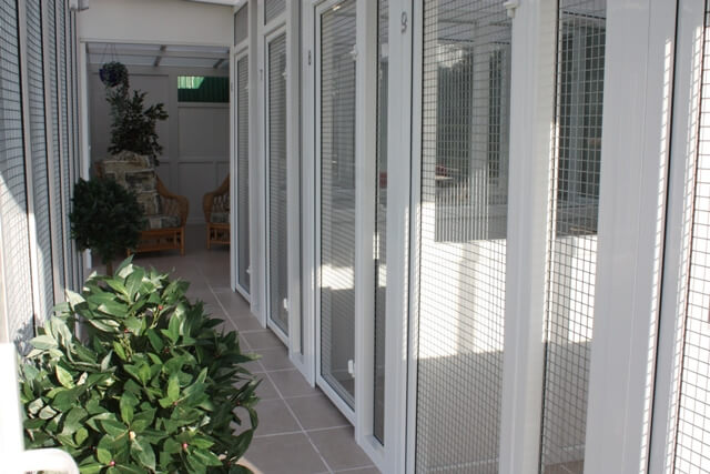 how to build a cattery pen
