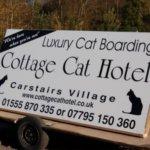 Cottage Cat Hotel, South Lanarkshire