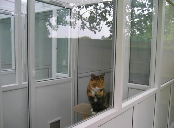 Riverside Cat Hotel, Salisbury, Wiltshire