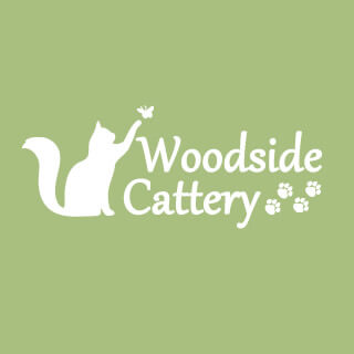 Woodside Luxury Cat Hotel