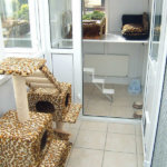 Westlodge Cattery, Cambridgeshire