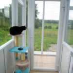 PVCu Cattery, France