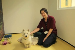 Pride Veterinary Centre