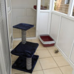 uPVC Cattery Gloucestershire