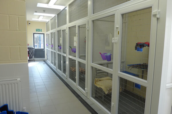 uPVC Cattery, Blue Cross, Bromsgrove