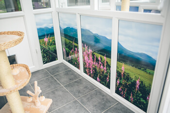 mountain-suite-350