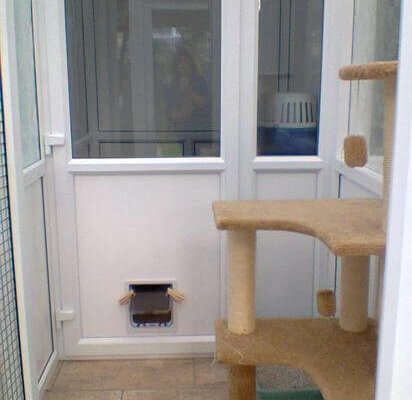 Amber Lodge Cattery
