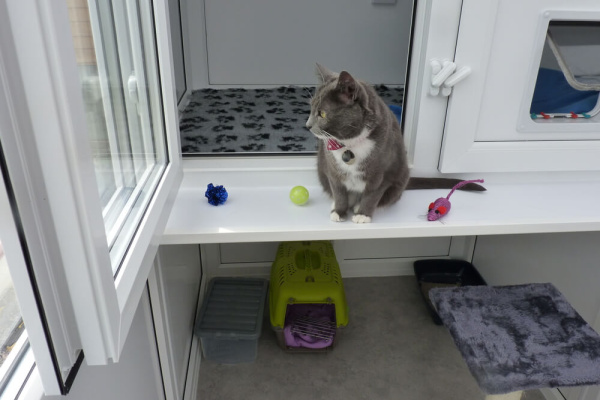 Purrfect Stay Cattery