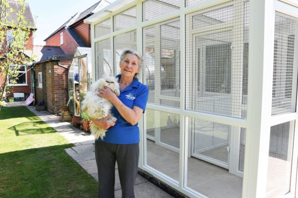Redditch Cat Rescue - Rescue cat pens