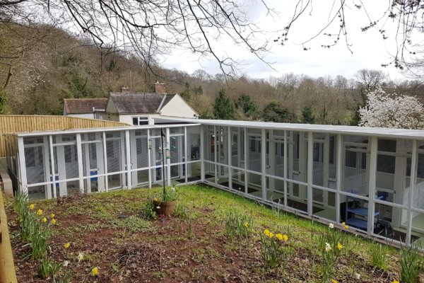 Cattery and Garden